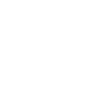 lift elevator consulting logo